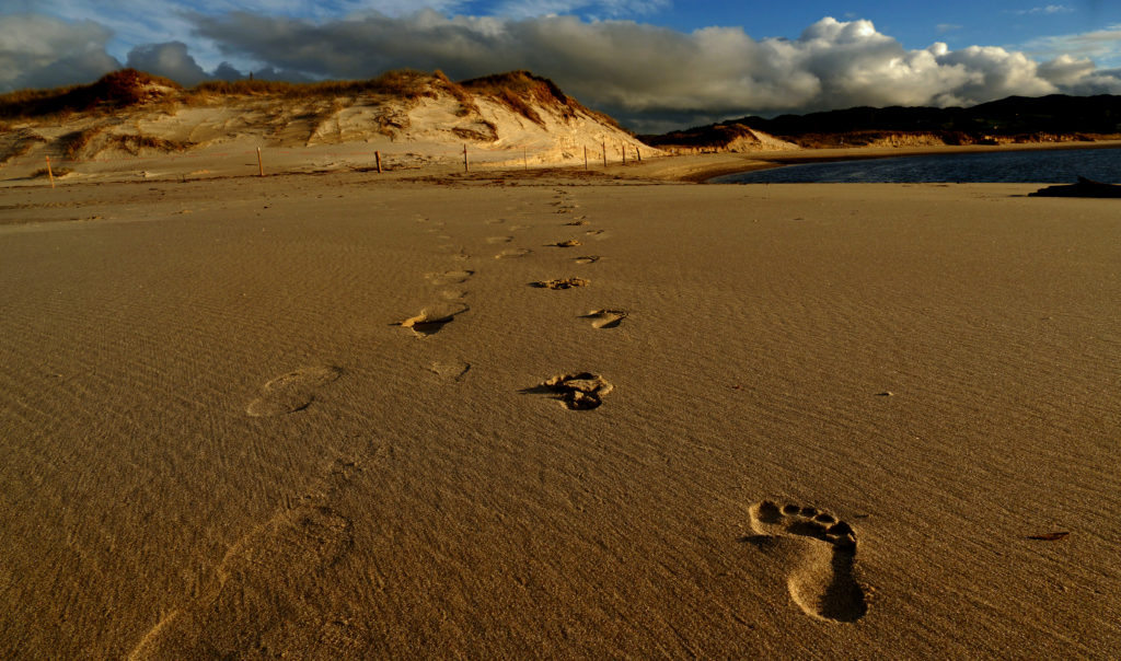 Footprints in the sand heading to a mountain.
