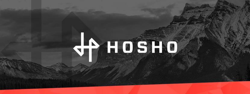 HoshoCon 2018